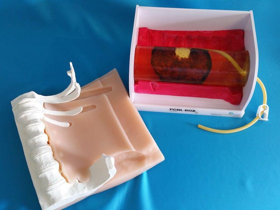 PCNL Kidney Trainer